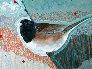 Junco - Shifting Seasons